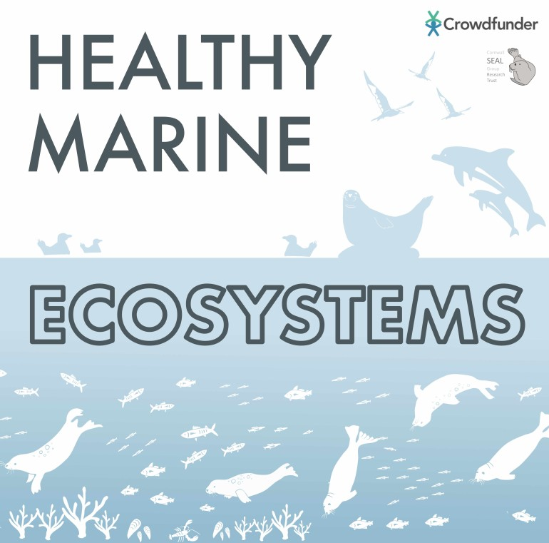 Healthy Marine Ecosystems