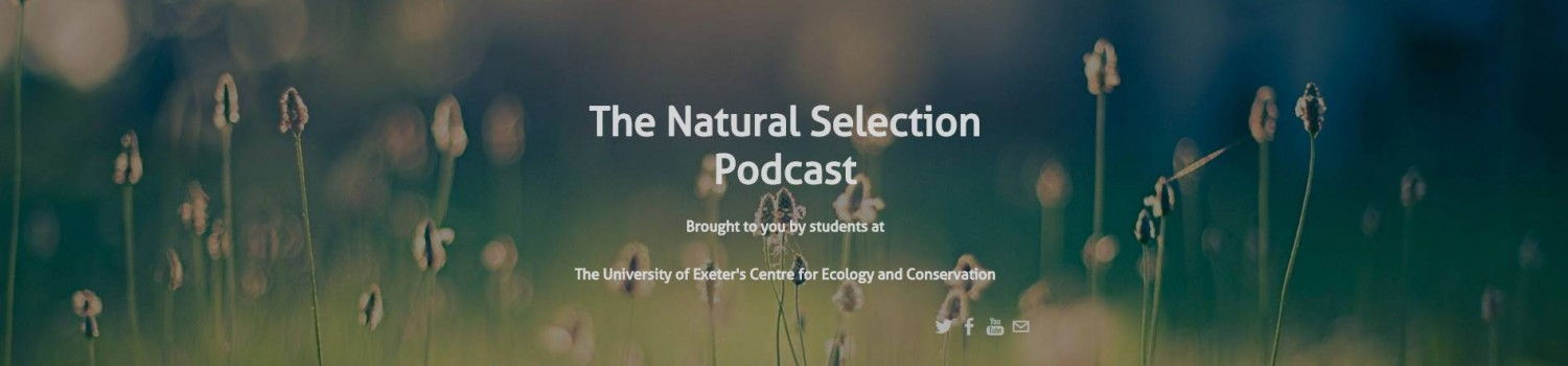 Natural Selection banner