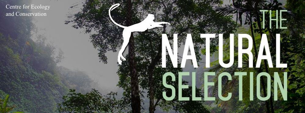 UoE Natural Selection logo by UoE