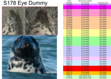 STAPIP seal's previous sightings
