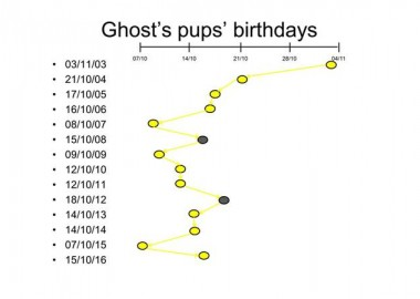 pupping-dates-2