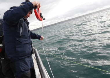 7 Plankton survey